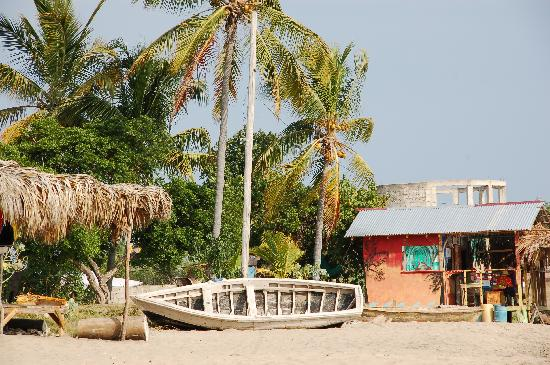 Two Seasons Guest House: The Beach at Frenchman's Reef in Treasure Beach