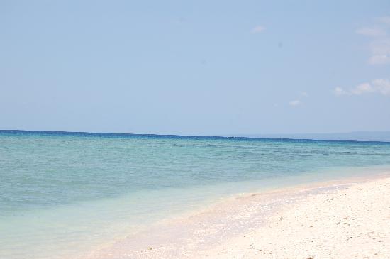 Alam Gili: playa desde el hotel