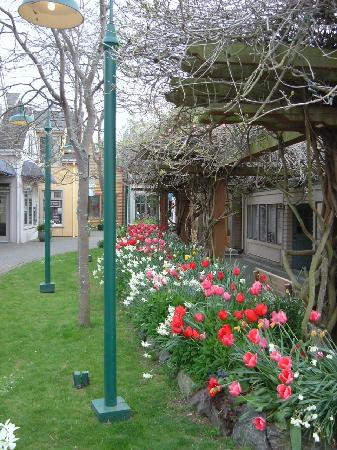 Northwest Language Cultural Center Guesthouse: Langley Town Square