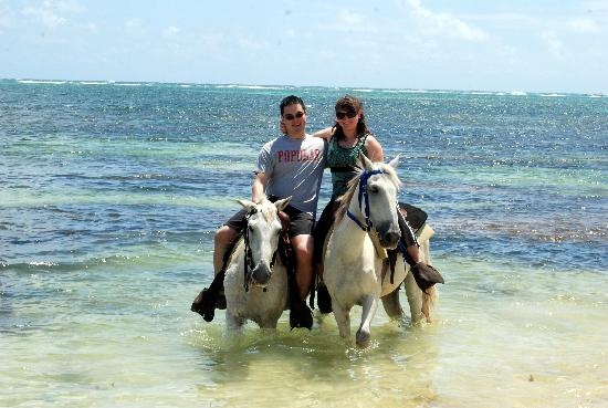 Pandora Stables: Wading with our horses in the Caribbean