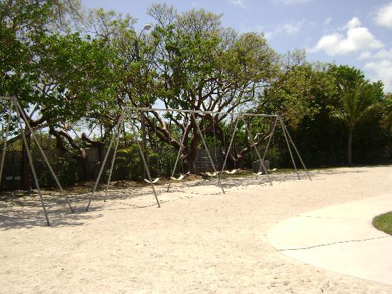 Library Beach Park: The swings