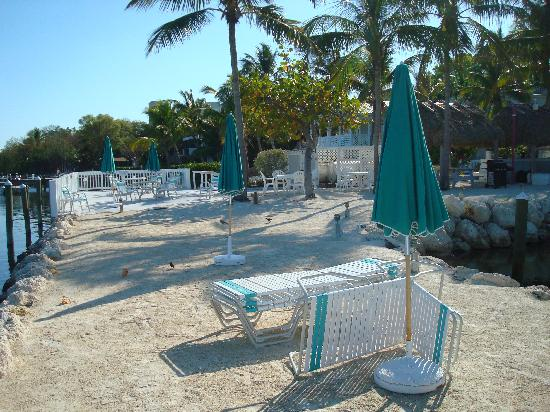 Amy Slate's Amoray Dive Resort: Overview of group area, nice chairs and tables