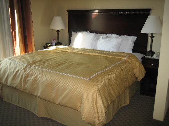 Comfort Suites Kodak: King bed