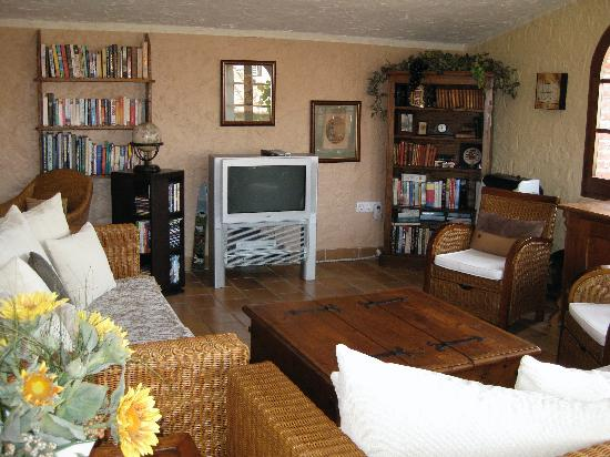 Casa Matilda Bed and Breakfast: spacious lounge with t.v. and library