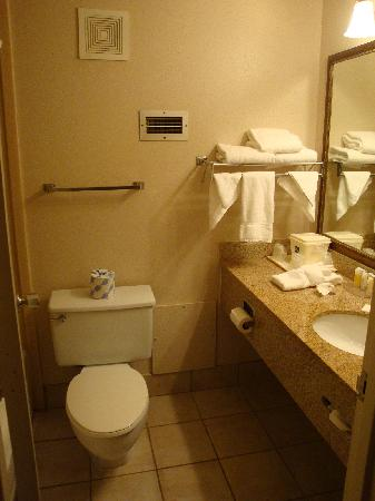 Quality Hotel Conference Center: Nice Bathroom