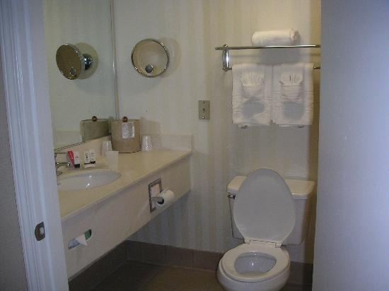 Fairfield Inn & Suites Oakland Hayward : Toilet