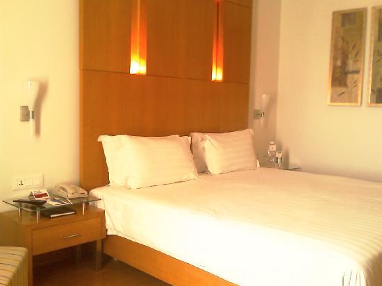 Ramada Jaipur : Their Deluxe room