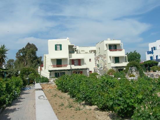 Angeliki Studios & Apartments Naxos