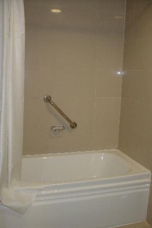 LIDOTEL Hotel Boutique Valencia : Shower/Tub