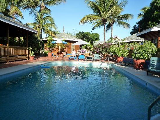 Toucan Inn: The pool