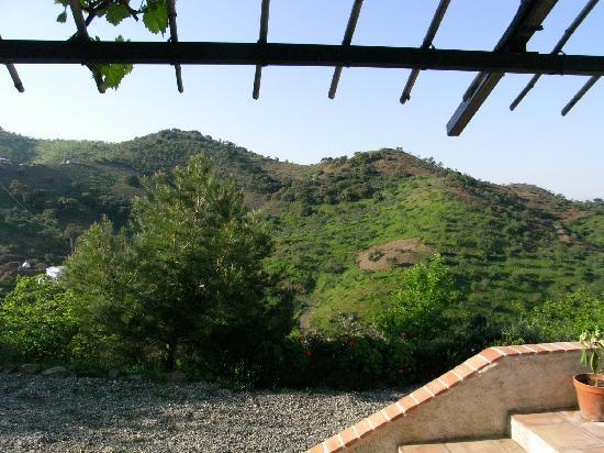 Las Nuevas Alora: Our View