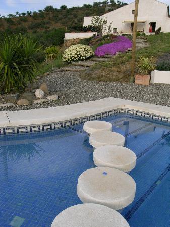 Las Nuevas Alora: The Pool