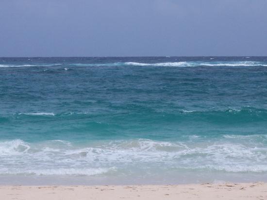 Barcelo Punta Cana: Beach