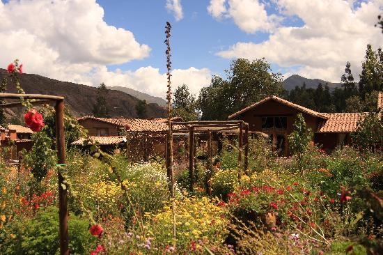 Casa Colibri eco-Lodge: The Garden of Eden