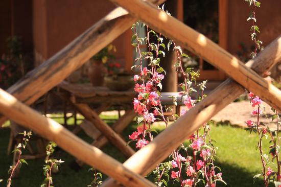 Casa Colibri eco-Lodge: Tranquility......