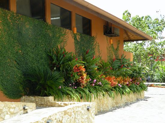 Nayara Hotel, Spa & Gardens: Beautiful landscaping