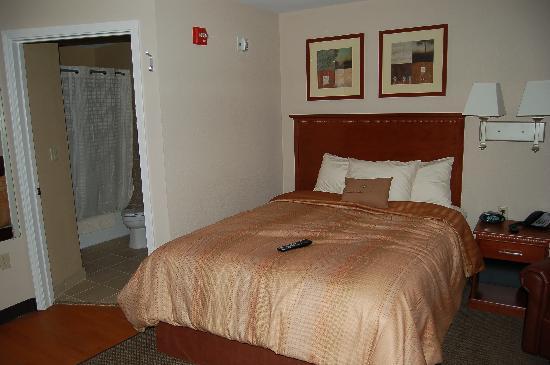 Candlewood Suites Aberdeen - Edgewood - Bel Air : Queen Suite Room