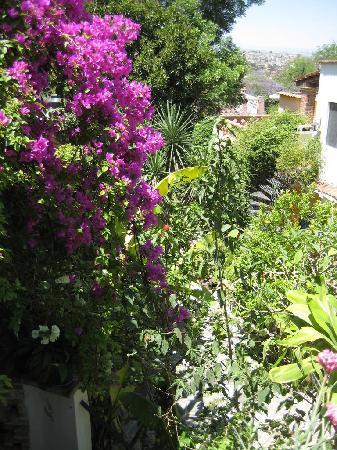 Quinta Recreo garden