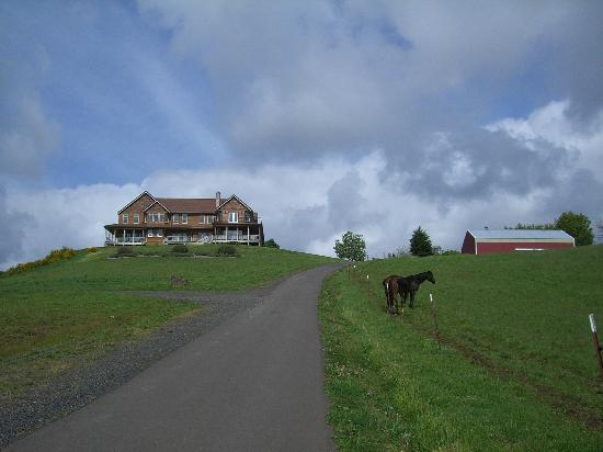 Youngberg Hill: VIew of YoungBerg Inn