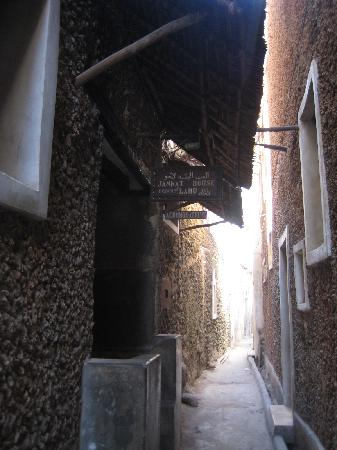 Jannat House : Hotel entrance from alley