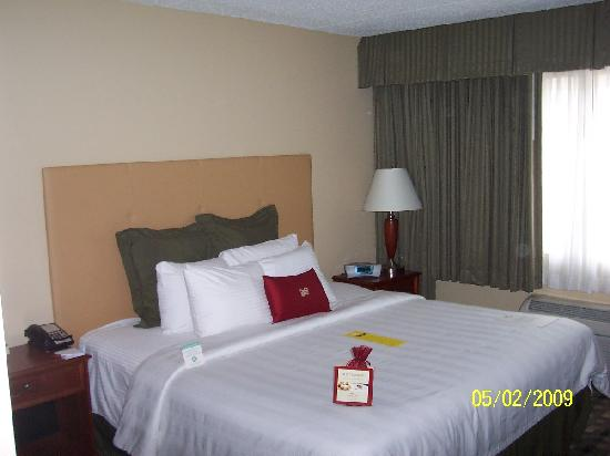 Quality Hotel: The Crowne Plaza bed