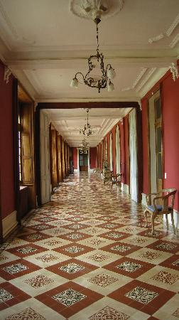 Chateau de la Buronniere: The main cooridor. Expect to see their darling cat lounging here!