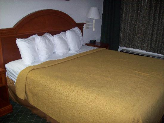 Quality Inn & Suites Biltmore East: King Bed