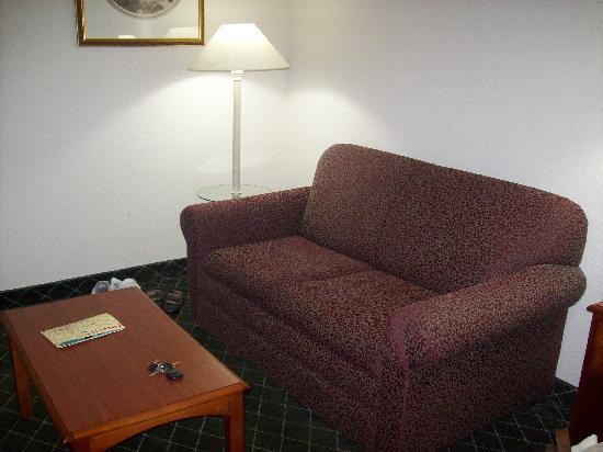 Quality Inn & Suites Biltmore East: Sitting area (sleeper sofa)