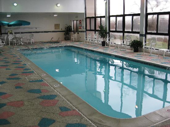 Hampton Inn Detroit/Belleville-Airport Area: Pool