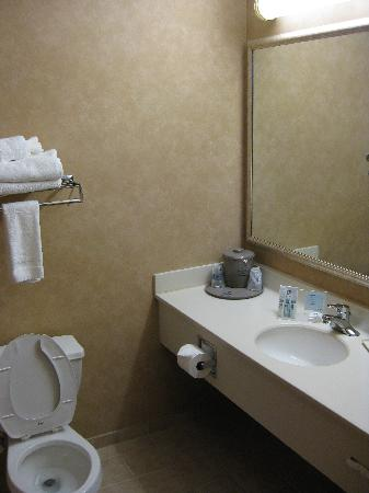 Hampton Inn Detroit/Belleville-Airport Area: Bathroom