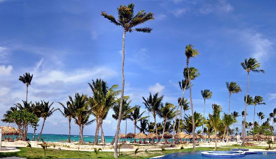 Iberostar Grand Hotel Bavaro: Lots of trees