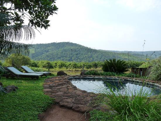 Rock-a-Bye Bed & Breakfast: la toute petite piscine