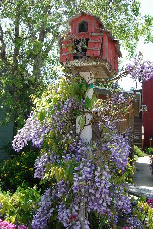 Linn's Easy As Pie Cafe: Haunted Bird house w/ view