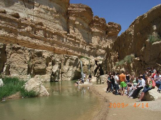 Tamerza Canyon