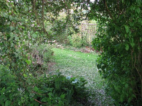 Glastonbury Properties - Hillside: A view of the garden