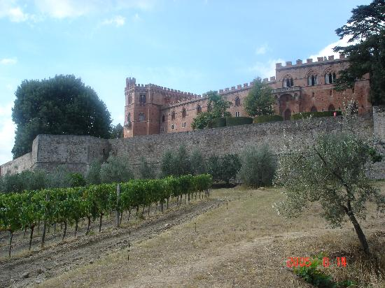 Siena, Italy: Castello di Brolio, Chianti Country winery