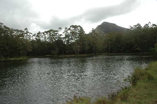 Munnar, India: Lake view on the top after a short trek from the hotel
