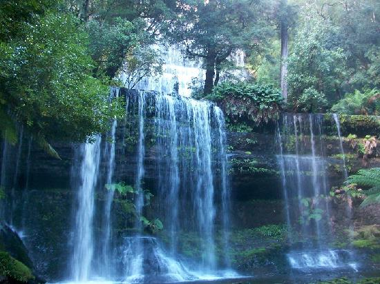 Argyle Motor Lodge: Russel Falls, Mt Field Natl Park