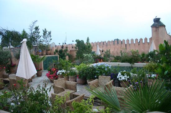 Dar Les Cigognes: Roof Garden