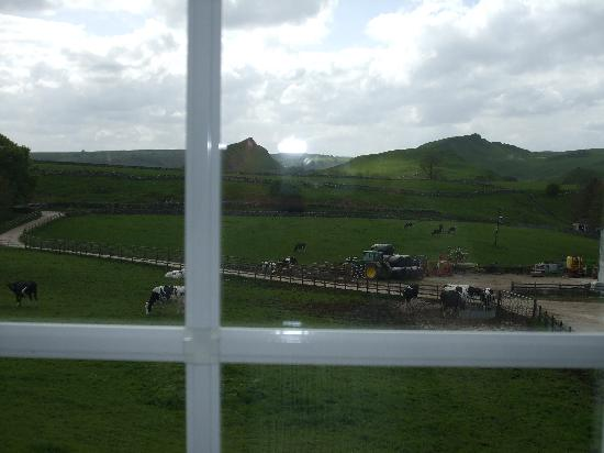 Fernydale Farm: The view from our window