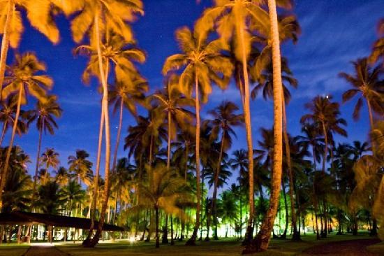 Club Med Itaparica: Coqueiral a noite