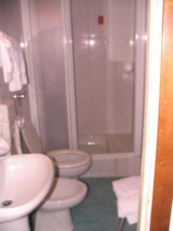 Hotel Adler: The bathroom