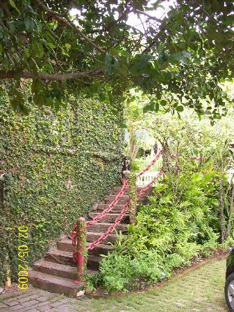 Pousada Akoiba: Escada