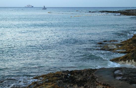 "The Money Bar Beach Club: view to north of ""underwater interpretive trail"""