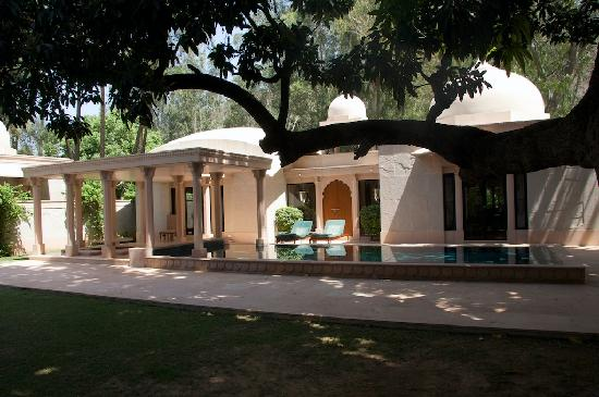 Ajabgarh, India: Our private pool
