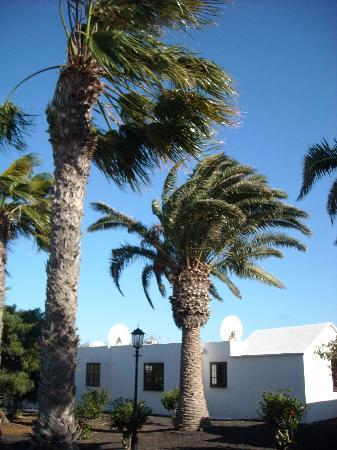 Yaiza, Spagna: Casas del Sol, el viento no para de soplar pero la experiencia es buena de todos modos...