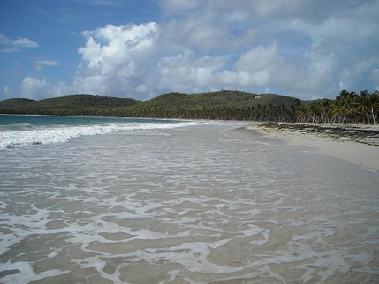HOTEL CAP MACABOU: La plage du Grand Macabou