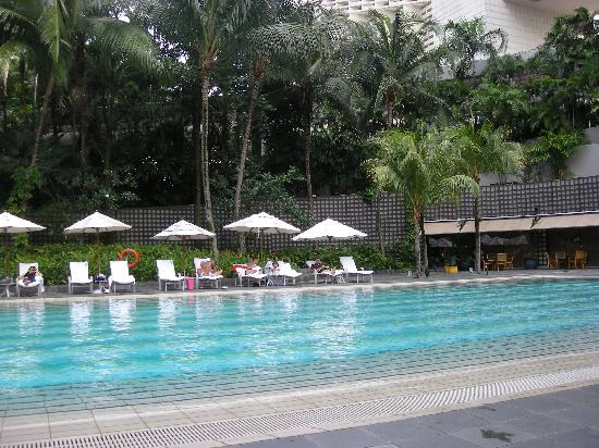 Hotel Pool Picture Of The Ritz Carlton Millenia Singapore Singapore Tripadvisor