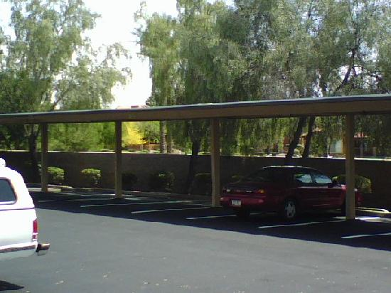 Metal Covered Parking : Free covered parking and lots of it picture budget