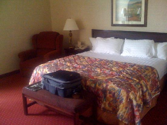 Drury Inn & Suites Houston Hobby Airport: King room